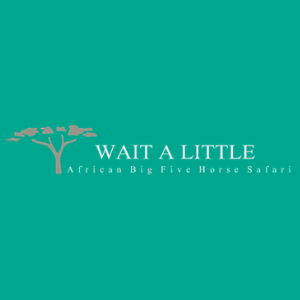 Wait A Little logo