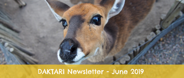 Newsletter June 2019